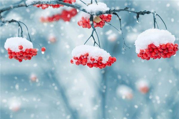 梦见下雪是什么意思