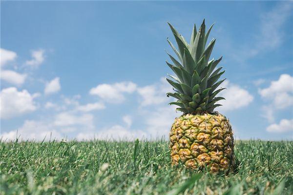 梦见菠萝是什么意思