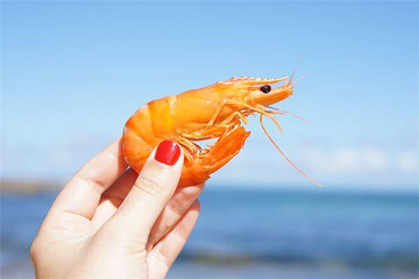 梦见虾是什么意思