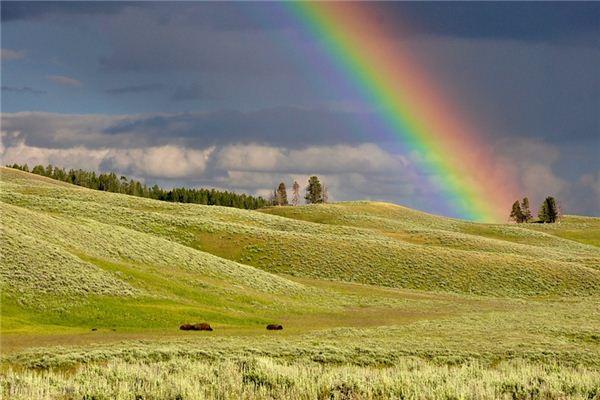 梦见彩虹是什么意思