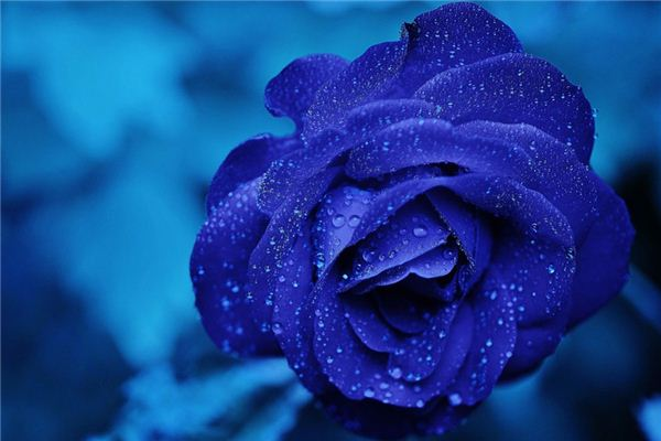 梦见蓝色是什么意思