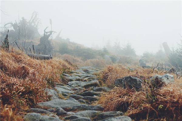夢見走山路是什么意思
