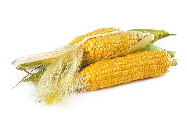 梦见玉米是什么意思