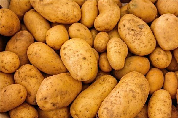 梦见马铃薯是什么意思