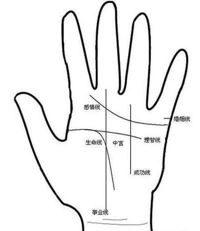 男人的左手的手相图解 男人左手手相 福缘殿