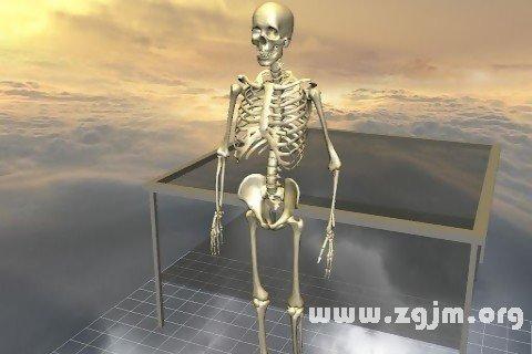 梦见骨骼 骨头