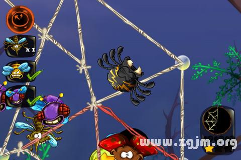 梦见毒蜘蛛