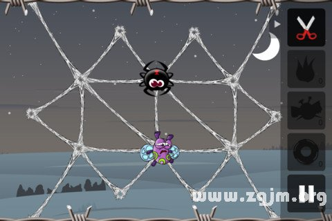 梦见蜘蛛结网