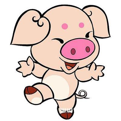 生肖猪的魅力