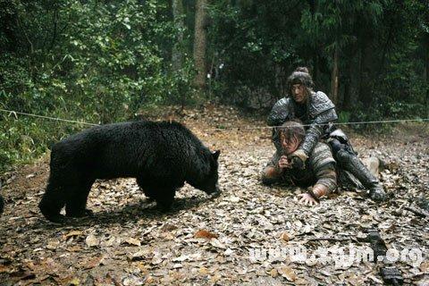 梦见黑熊袭击人