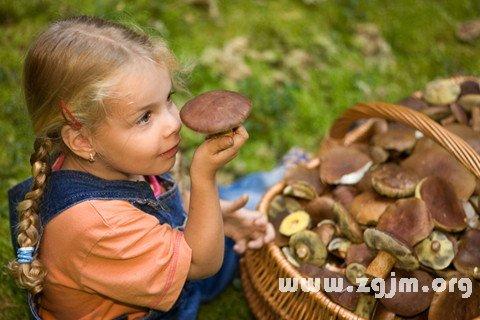 梦见采蘑菇