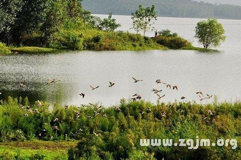梦见江河湖