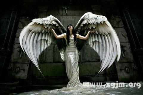 庄闲游戏天使