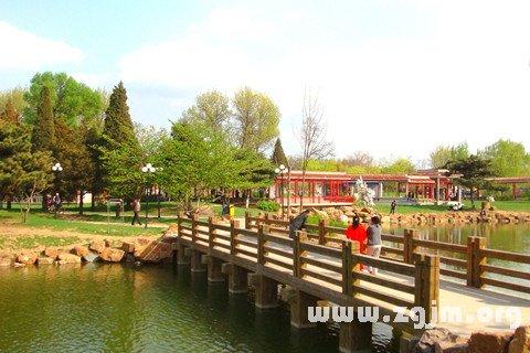 庄闲游戏公园