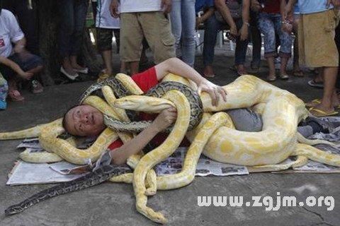 庄闲游戏蛇缠身