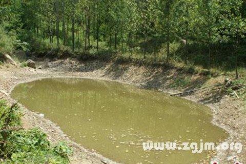庄闲游戏水坑