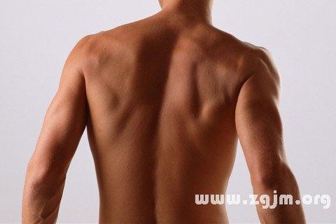 梦见脊椎 背脊 脊柱