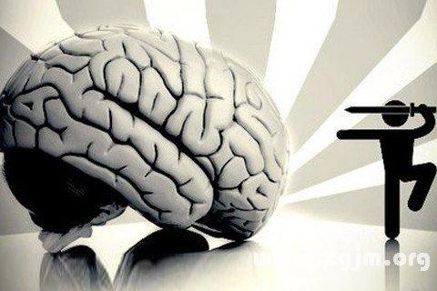 梦见脑子 大脑