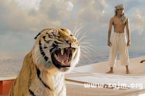 梦见遇见老虎而吓一跳