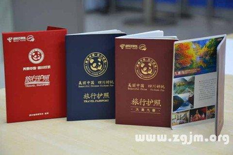 梦见旅行护照