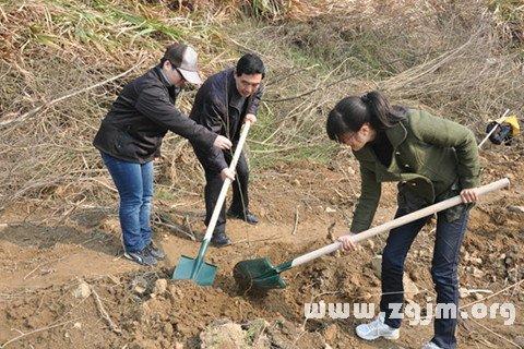女人梦见自己挖土埋人