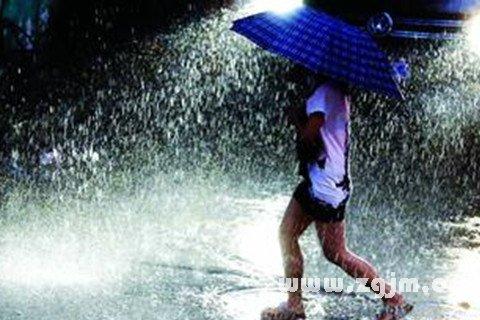 梦见被大雨淋