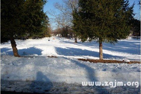 梦见新雪堆积