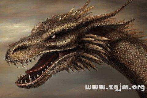 梦见龙蛇_周公解梦梦到龙蛇是什么意思_做梦梦见龙蛇