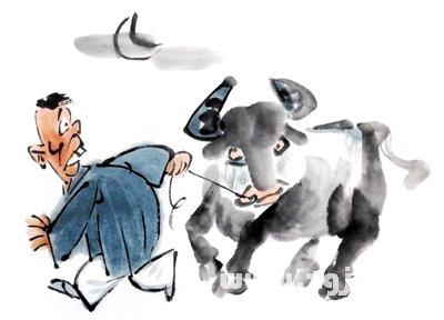 梦见牛被偷
