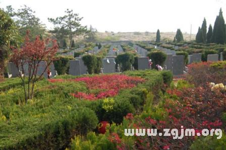 梦见坟墓上长花是什么意思