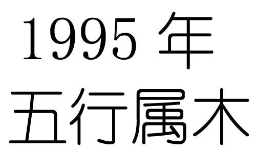 1995年五行属什么?1995年出生是什么命?