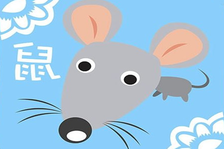生肖鼠为什么不结婚