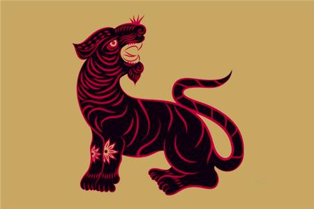 属虎的人改变命运的方法
