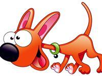 生肖狗如何表达爱