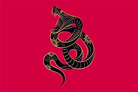 属蛇的人改变命运的方法