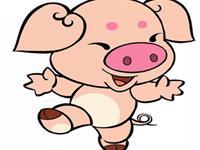 属猪生肖配对姻缘
