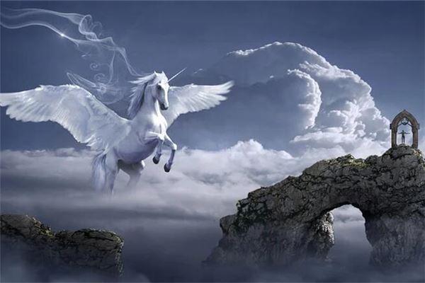 梦见马在天上飞