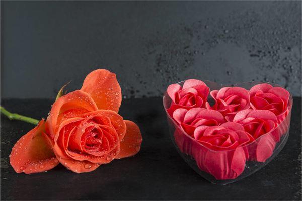 梦见一大束玫瑰花