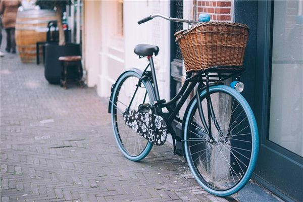 夢見自行車 單車