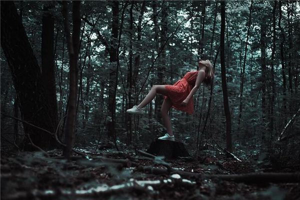 梦见像小鸟一样在山林上飞翔