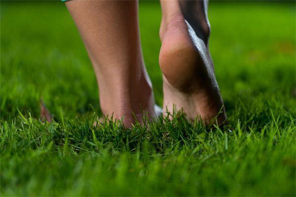 梦见脚跟 脚后跟