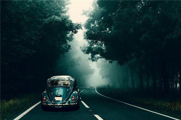 梦见开名车