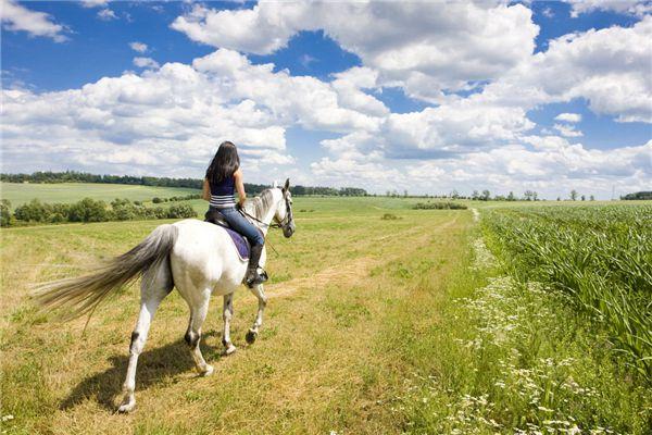 梦见骑马逃跑