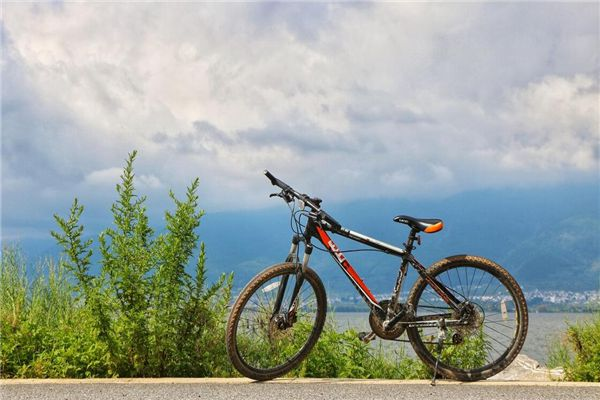 梦见卖自行车