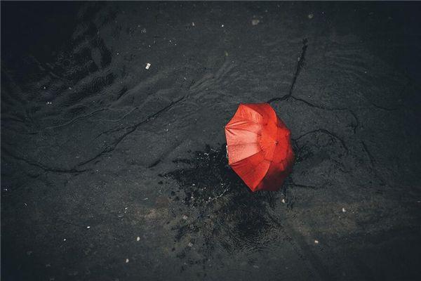 梦见雨伞丢了