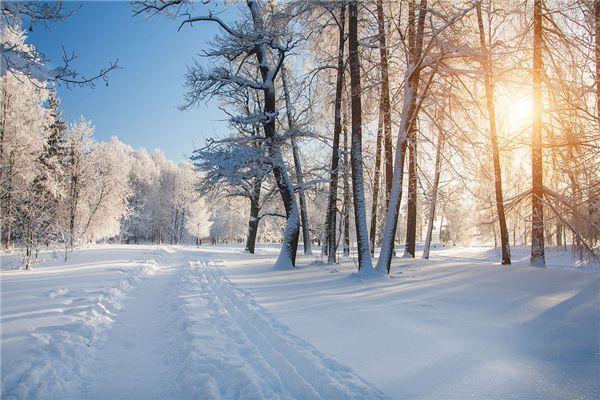 梦见窗外下雪