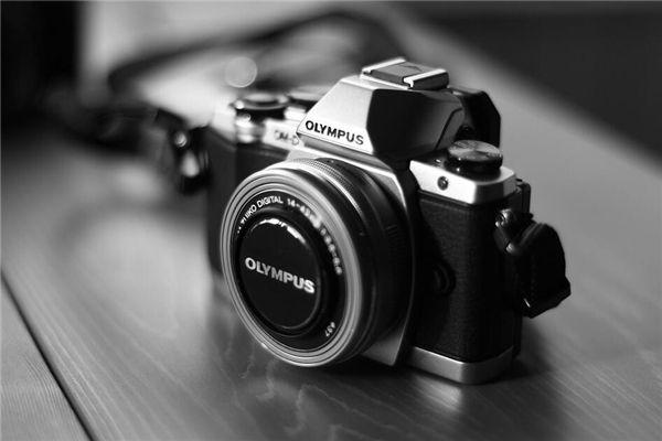 梦见买照相机