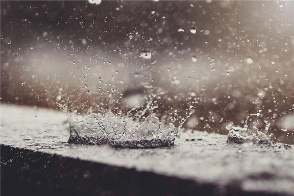 梦见屋里下雨