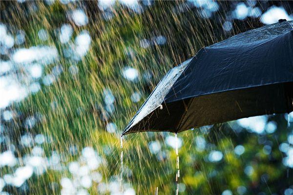 梦见窗外下雨