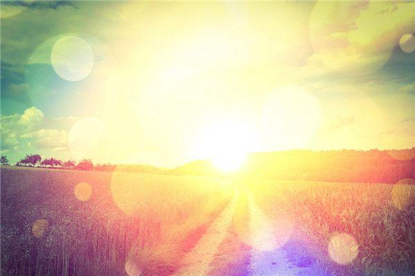 梦见太阳刺眼